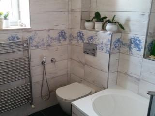Rekonstrukce 30 let staré koupelny